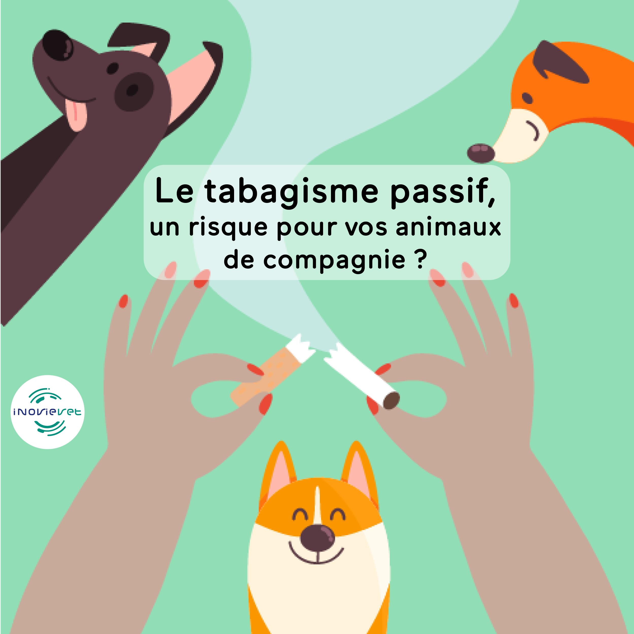 """L'image représente des mains qui cassent une cigarette, on voit plusieurs chiens dessinés heureux, et le titre de l'article """"Le tabagisme passif, un risque pour vos animaux de compagnie?"""" est encadré au centre."""