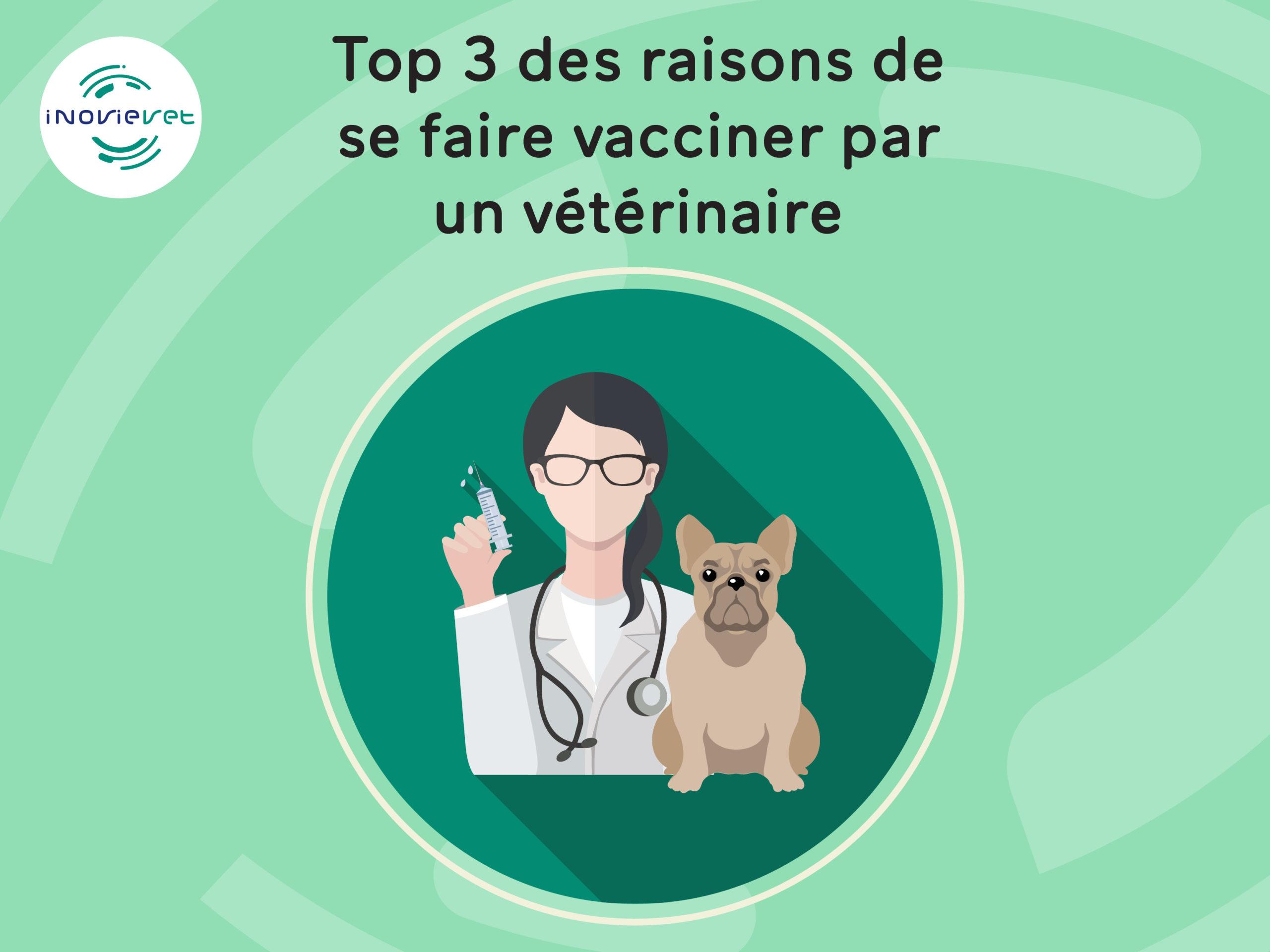 Top3 des raisons de se faire vacciner par un vétérinaire